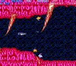 Salamander Arcade 13