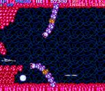 Salamander Arcade 15