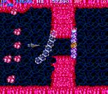 Salamander Arcade 19