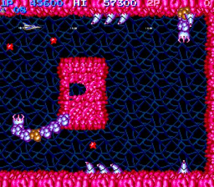 Salamander Arcade 20