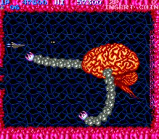 Salamander Arcade 22