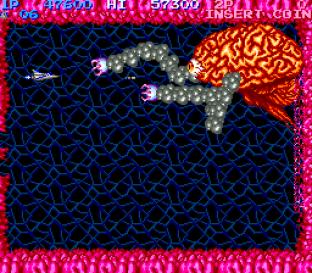 Salamander Arcade 23