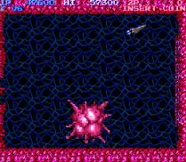 Salamander Arcade 25
