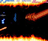 Salamander Arcade 60
