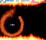 Salamander Arcade 63