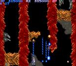 Salamander Arcade 71