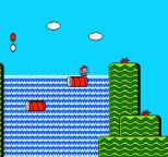 Super Mario Bros 2 NES 03