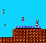 Super Mario Bros 2 NES 13