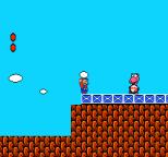 Super Mario Bros 2 NES 14