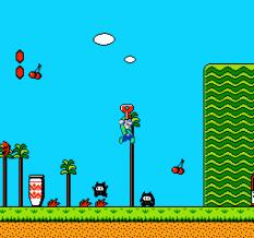 Super Mario Bros 2 NES 21