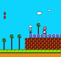 Super Mario Bros 2 NES 29