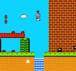 Super Mario Bros 2 NES 35