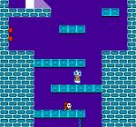 Super Mario Bros 2 NES 39