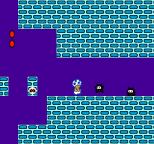 Super Mario Bros 2 NES 48