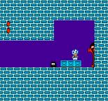 Super Mario Bros 2 NES 49