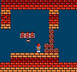 Super Mario Bros 2 NES 50