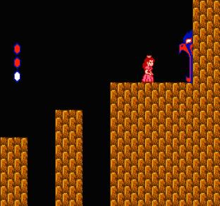Super Mario Bros 2 NES 67