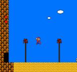 Super Mario Bros 2 NES 69