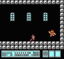 Super Mario Bros 3 NES 26