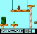 Super Mario Bros 3 NES 38