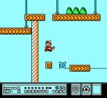 Super Mario Bros 3 NES 39
