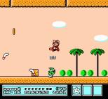 Super Mario Bros 3 NES 85