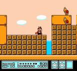 Super Mario Bros 3 NES 91