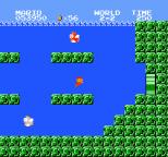 Super Mario Bros NES 39