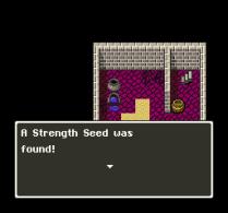Dragon Quest 5 SNES 027