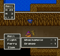 Dragon Quest 5 SNES 038