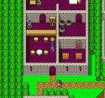 Dragon Quest 5 SNES 062