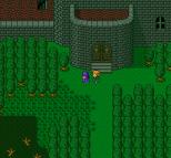 Dragon Quest 5 SNES 079
