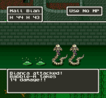 Dragon Quest 5 SNES 091