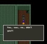 Dragon Quest 5 SNES 103