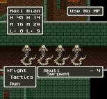 Dragon Quest 5 SNES 113