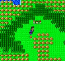 Dragon Quest 5 SNES 125