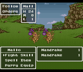 Dragon Quest 6 SNES 022