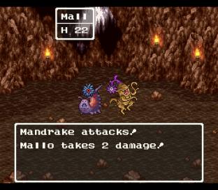 Dragon Quest 6 SNES 031