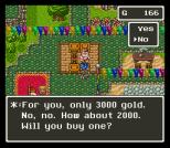 Dragon Quest 6 SNES 040