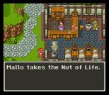 Dragon Quest 6 SNES 059