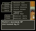 Dragon Quest 6 SNES 062
