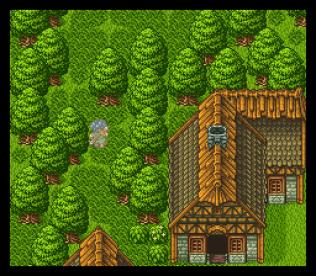 Dragon Quest 6 SNES 066