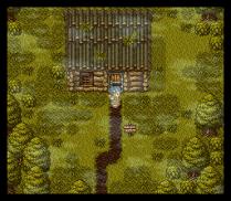 Dragon Quest 6 SNES 068