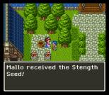 Dragon Quest 6 SNES 091