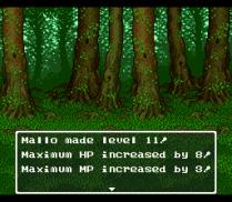 Dragon Quest 6 SNES 179