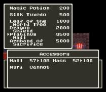 Dragon Quest 6 SNES 189