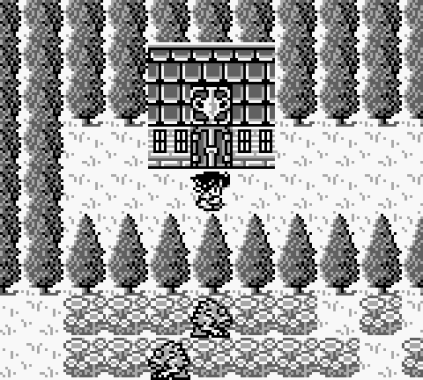 Final Fantasy Legend 3 Game Boy 100