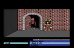 Labyrinth C64 25