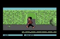 Labyrinth C64 68