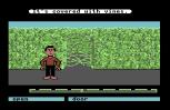 Labyrinth C64 73
